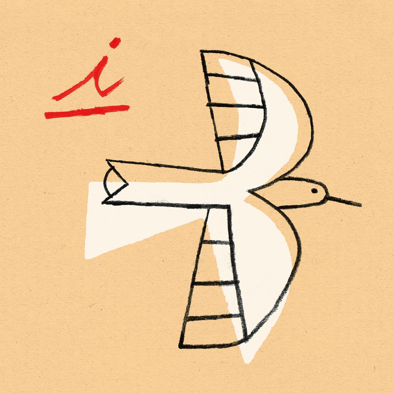 miguel porlan, illustration, bird, drawing